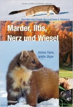Boek_MarderIltis
