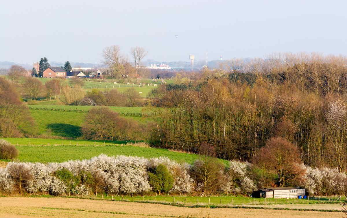 Kleinschalig_landschap_Vilda_LR